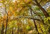 Katy Trail near Rocheport, MO - C1-0388 - 72 ppi