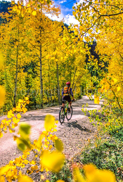Mountain biker on Colorado's Alpine Loop - Lake City to Engineer Pass in San Juan Mts  - 9  - 72 ppi