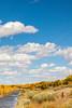 Bosque del Apache Nat'l Wildlife Refuge, New Mexico -0126 - 72 ppi