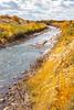 Bosque del Apache Nat'l Wildlife Refuge, New Mexico -0094 - 72 ppi