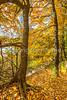 Katy Trail near Rocheport, MO - C1-0446 - 72 ppi