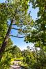 Blue Ridge Bliss-Skyline Drive - D7-C2-0107 - 72 ppi-3