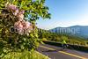 Blue Ridge Bliss-Skyline Drive - D7-C2-0006 - 72 ppi