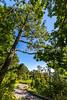 Blue Ridge Bliss-Skyline Drive - D7-C2-0105 - 72 ppi