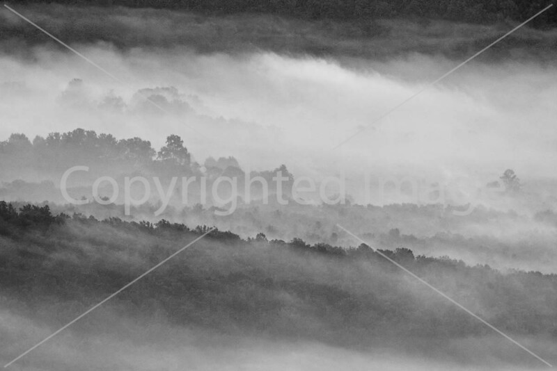 Blue Ridge Parkway - dawn - 10-5-08 - 0008 - b&w - 72 dpi