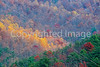 Blue Ridge Pkwy - 16 - 72 dpi_