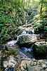 Dark Hollow Trail & Falls, short hike from Skyline Drive in Shenandoah National Park, Virginia - 72 dpi - -0124