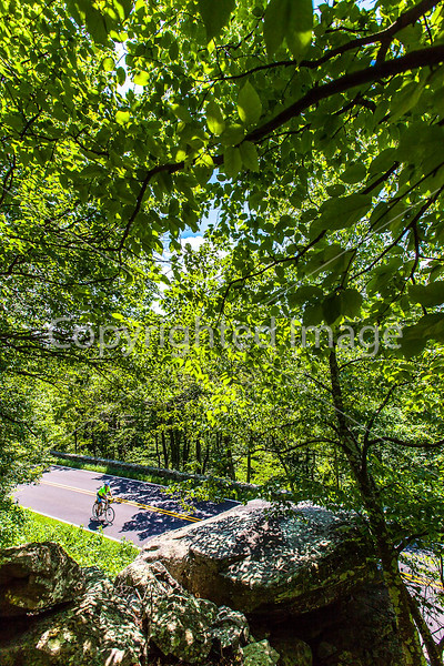 Blue Ridge Bliss-Skyline Drive - D6-C2-0077 - 72 ppi