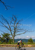 Blue Ridge Bliss-Skyline Drive - D6-C3-0183 - 72 ppi
