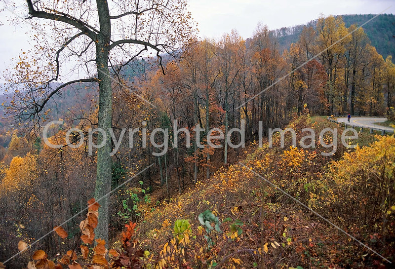 Blue Ridge Parkway - fall - 6 - 72 dpi