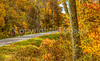 TransAm & Bike Route 76 riders on Blue Ridge Parkway, VA - C3-2 - 300 ppi-2