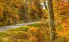 TransAm & Bike Route 76 riders on Blue Ridge Parkway, VA - C3-2 - 72 ppi-2