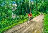 Cyclist on C&O Canal Towpath near WV-MD border - 4-2 - 72 ppi