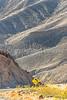 Death Valley Nat'l Park - D1-C1-0788 - 72 ppi