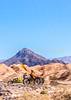 Death Valley National Park - D3-C1-0553 - 72 ppi-3
