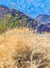 Death Valley National Park - D4-C3-0692 - 72 ppi-2
