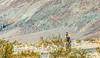 Death Valley National Park - D4-C3-0321 - 72 ppi
