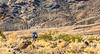 Death Valley National Park - D4-C3-0623 - 72 ppi-2