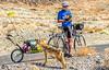 Death Valley National Park - D4-C1-0248 - 72 ppi-2