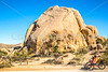 Joshua Tree National Park - 2016 -D1- C3-0007 - 72 ppi