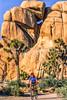 Mountain biker at Joshua Tree National Park in California - 3-2 - 72 ppi