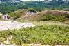 Biker(s) near Race Point Beach in Cape Cod Nat'l Seashore, MA - C1 -0028 - 72 ppi