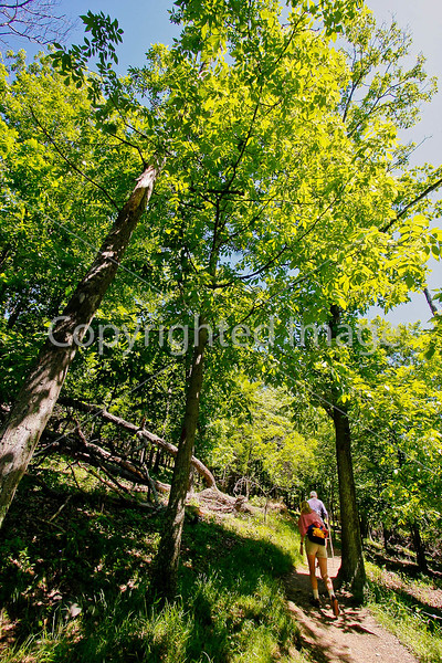 Hikers on Maryland Heights in Harpers Ferry NHP in Maryland & West Virginia-D3C2--0260 - 72 ppi