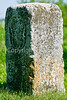 Mason-Dixon Line markers along Lee's retreat route from Gettysburg, PA-D2C1--0149 - 72 ppi