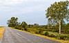 Bayou road on Louisiana side of Grant's campaign route to Vicksburg,  MS - D3-C3-0079 - 72 ppi