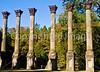 Ruins of Windsor Plantation near Port Gibson, Mississippi  - D6 - C3-0014 - 72 ppi