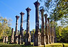 Ruins of Windsor Plantation near Port Gibson, Mississippi - D5 - C2-0139 - 72 ppi