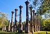 Ruins of Windsor Plantation near Port Gibson, Mississippi - D5 - C2-0139 - 72 ppi