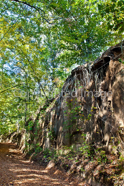 Shaifer Road on Grant's path to Port Gibson, MS - D6 - C2-0072 - 72 ppi