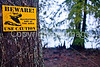 Winter Quarters site on Lake Saint Joseph in Louisiana - D4-C2-0004 - 72 ppi