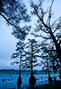 Winter Quarters site on Lake Saint Joseph in Louisiana - D4-C2-0007 - 72 ppi