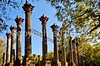 Ruins of Windsor Plantation near Port Gibson, Mississippi - D5 - C2-0155 - 72 ppi