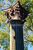 Ruins of Windsor Plantation near Port Gibson, Mississippi  - D6 - C3-0022 - 72 ppi