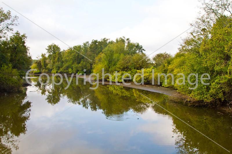 Stream along Grant's March in Louisiana, feeding Yucatan Lake - D4-C3-0045 - 72 ppi