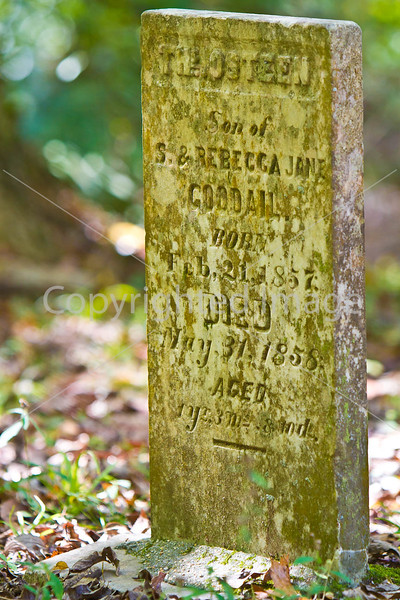 Gravestones at Grand Gulf Military Park near Port Gibson, Mississippi - D5 -C1-0048 - 72 ppi