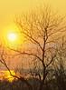 Mississippi River in evening light - 1-Edit - 72 ppi-3