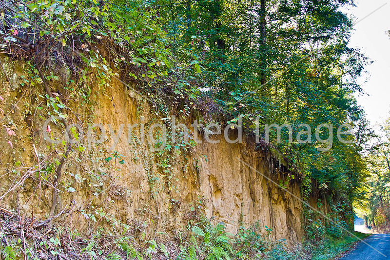 Russum-Westside Road on Grant's path to Port Gibson, MS - D5 - C3-0271 - 72 ppi