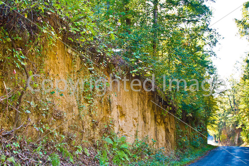 Russum-Westside Road on Grant's path to Port Gibson, MS - D5 - C3-0272 - 72 ppi