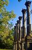 Ruins of Windsor Plantation near Port Gibson, Mississippi  - D6 - C3-0008 - 72 ppi