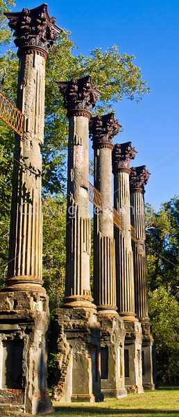 Ruins of Windsor Plantation near Port Gibson, Mississippi  - D6 - C3-0010 - 72 ppi