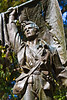 Vicksburg Nat'l Military Park, MS - D1-C1--0093 - 72 ppi