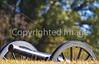 Vicksburg Nat'l Military Park, MS - D1-C1--0010 - 72 ppi