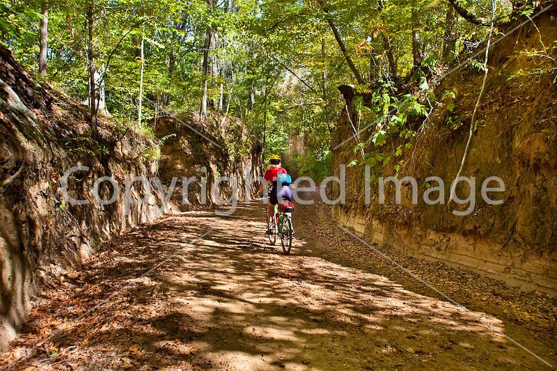 Biker on Shaifer Road near Port Gibson, MS - D1-C2 -0403 - 72 ppi