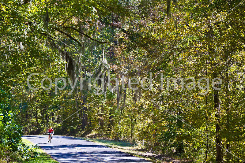 Cyclist on Rodney Road near Port Gibson, MS - D1-C1 -0074 - 72 ppi