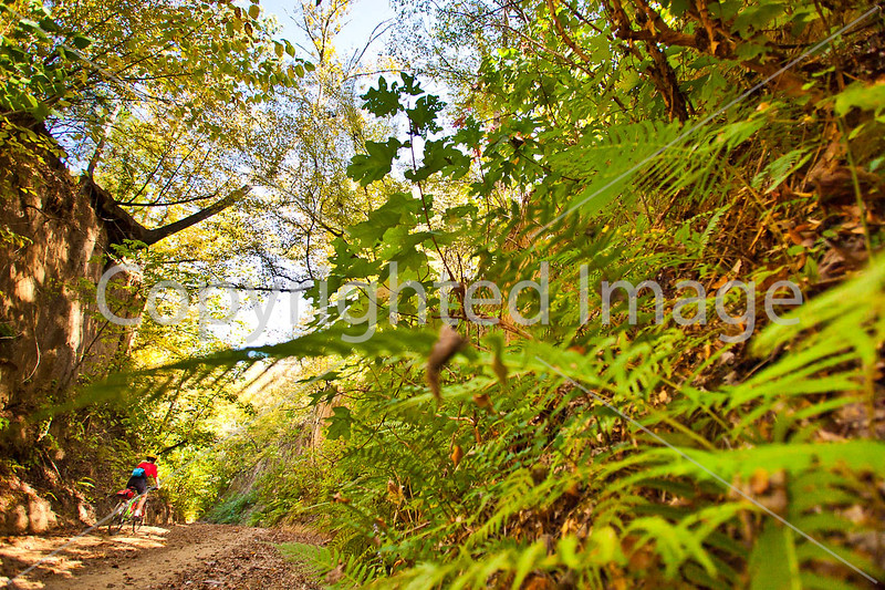 Biker on Shaifer Road near Port Gibson, MS - D1-C2 -0424 - 72 ppi