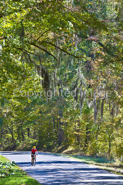 Cyclist on Rodney Road near Port Gibson, MS - D1-C1 -0093 - 72 ppi